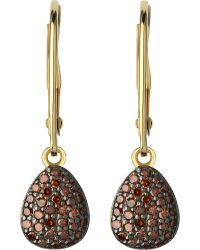 Links of London | Brown Hope 18ct Yellow-gold And Cognac Diamond Earrings | Lyst