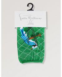 Pierre Mantoux - Green Donald Bird-pattern Socks for Men - Lyst
