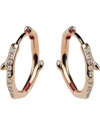 Shaun Leane | Multicolor Cherry Branch Rose-gold Vermeil And Diamond Hoop Earrings | Lyst
