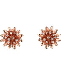 Gucci | Flora 18ct Pink Gold Earrings | Lyst