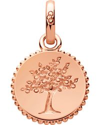 Links of London - Metallic Amulet 18ct Rose Gold Vermeil Tree Of Life Charm - Lyst