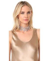 Elizabeth Cole - Multicolor Paxon Crystal Choker Necklace - Lyst