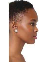 Elizabeth Cole   Multicolor Regina Earrings   Lyst