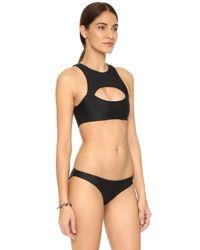 Mikoh Swimwear - Black Marrakesh Crop Bikini Top - Lyst