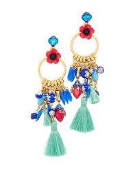 Elizabeth Cole   Multicolor Aussie Earrings   Lyst