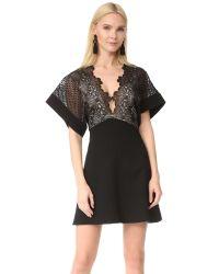 Lover | Black Camelia Bonded Mini Dress | Lyst