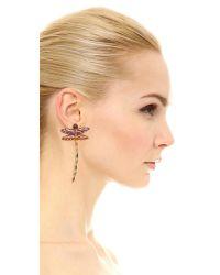 Noir Jewelry - Multicolor Dragonfly Earrings - Lyst
