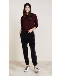 Splendid - Black Crushed Velvet Pants - Lyst