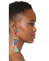Elizabeth Cole - Multicolor Aussie Earrings - Lyst