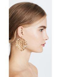 Oscar de la Renta - Metallic Monstera Leaf Earrings - Lyst