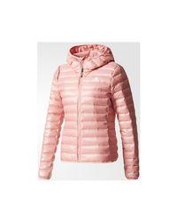 136568c573fb adidas Originals. Pink Varilite Hooded Down Women s Jacket In Multicolour