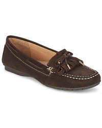 Sebago | Meriden Kiltie Women's Loafers / Casual Shoes In Brown | Lyst