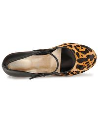 Rockport - Multicolor Presia Tied Mj Women's Court Shoes In Multicolour - Lyst