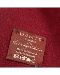 Dents - Red Burgundy Lambswool Scarf - Lyst