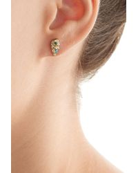 Carolina Bucci - Metallic Owls Wing 18k Gold Earrings With Turquoise And Diamonds - Lyst