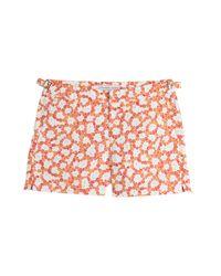 Orlebar Brown - Brown Setter Printed Swim Shorts for Men - Lyst