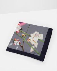 Ted Baker - Gray Bird Print Silk Pocket Square for Men - Lyst