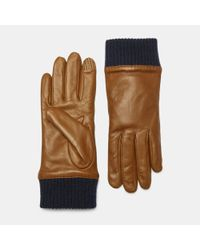 Theory - Multicolor Leather Ribbed Cuff Gloves for Men - Lyst