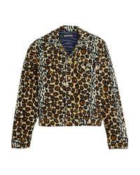 House of Holland   Brown Leopard-print Velvet Jacket   Lyst