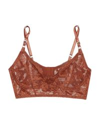 Lonely - Brown Bella Stretch-lace Underwired Bra - Lyst
