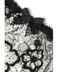 Agent Provocateur - Black Magdelena Embroidered Chantilly Lace Briefs - Lyst