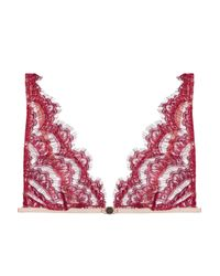Mimi Holliday by Damaris - Multicolor Scalloped Lace Soft-cup Triangle Bra - Lyst