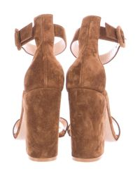 Gianvito Rossi - Brown Suede Ankle Strap Sandals - Lyst