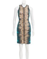 Roberto Cavalli | Metallic Snake Print Leather-trimmed Dress W/ Tags Tan | Lyst