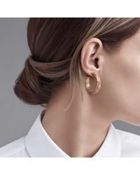 Tiffany & Co - Pink Paloma's Melody Hoop Earrings In 18k Rose Gold, Small - Lyst