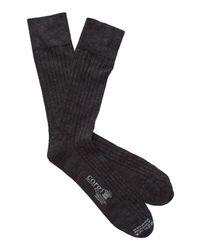 Corgi - Black Solid Charcoal Dress Socks for Men - Lyst