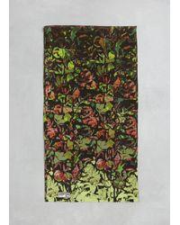 Anntian   Green Print F Silk Scarf Print F   Lyst