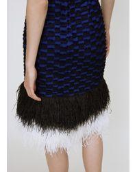 Proenza Schouler - Indigo / Black Ostrich Feather Pencil Skirt - Lyst