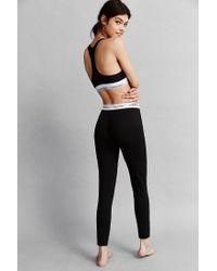 Calvin Klein - Black Classic Logo Legging - Lyst