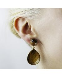 Carousel Jewels - Multicolor Small Drop Tiger Stone Earrings - Lyst