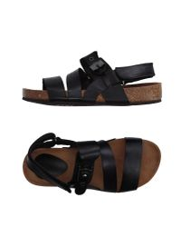 Scholl | Black Sandals | Lyst