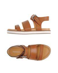 P.A.R.O.S.H. - Brown Sandals - Lyst