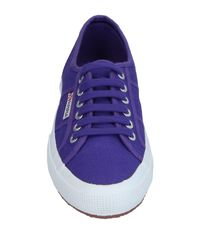 Superga - Purple Low-tops & Sneakers - Lyst