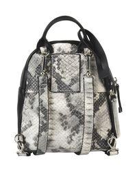 Steve Madden - Gray Backpacks & Bum Bags - Lyst