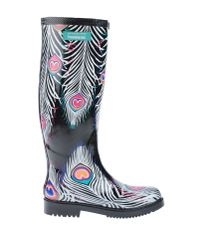 Matthew Williamson   Black Boots   Lyst