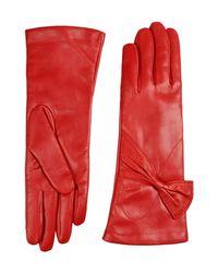 Jolie By Edward Spiers - Red Gloves - Lyst