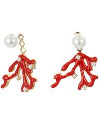 Kenneth Jay Lane | White Pearl Top With Gold/red Enamel/pearl Branch Drop Ear Jacket Earrings | Lyst