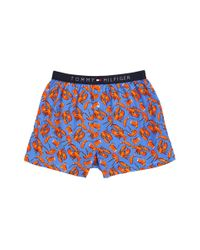 Tommy Hilfiger | Blue Fashion Woven Boxer for Men | Lyst