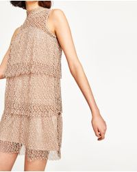 Zara   Multicolor Guipure Lace Dress   Lyst