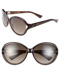 Dior Women'S Christian 'Elle 2' 60Mm Sunglasses - Havana - Lyst