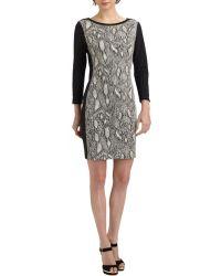 Rebecca Taylor Python-print Shift Dress - Lyst