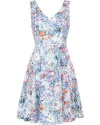 Coast Wyatt Print Dress blue - Lyst
