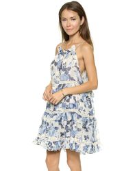 Zimmermann Hydra Cupcake Dress - Lyst
