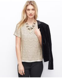 Ann Taylor Petite Champagne Lace Tee - Lyst
