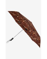 Express Leopard Print Umbrella