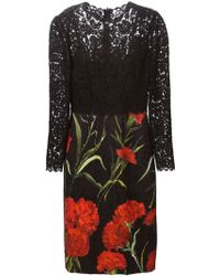Dolce & Gabbana Lace Embossed Carnations Print Dress - Lyst